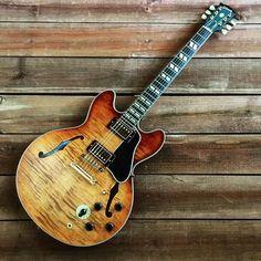 1340 best musical interludes images bass guitar case guitars rh pinterest com
