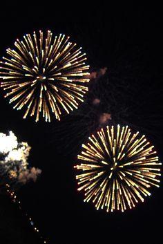 Fireworks Canada Day Fireworks, Fire Works, Dandelion, Art Ideas, Flowers, Plants, Fireworks, Dandelions, Plant
