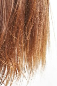 hair care tips damaged hair care ; hair care tips ; hair care tips for growth ; hair care tips damaged ; Caring For Colored Hair, Coloured Hair, Fried Hair, Dry Brittle Hair, Overnight Hairstyles, Home Remedies For Hair, Dry Hair Remedies, Prevent Hair Loss, Split Ends