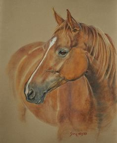 Equestrian Commission Portrait 'Paula' by Louise Charles-Saarikoski Pastel Horse Anatomy, Painting Competition, Horse Drawings, Equine Art, Horse Pictures, Online Painting, Horse Art, Animal Paintings, Pet Portraits
