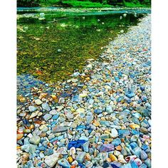 【wang_ri】さんのInstagramをピンしています。 《#photo #photooftheday #beautiful #so #good #china #very #nice #day #best #pic #life #style #colorful #stone #natural #Forest #river #green #川 #森 #自然 #景色 #風景 #空 #写真 #自由 #石 #川辺》