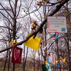 Oooh in #Leipzig gibt es einen Glücksbaum! Mit Glücksmomenten! Eine herrlich bezaubernde Idee von Leipzig lacht. Wer heute nach eine Prise gutes Karma gebrauchen kann - nix wie hin zur Sachsenbrücke ... Bunt, bunter, LEIPZIG!!! <3