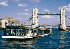 Thames River lunch cruise.  Can't wait
