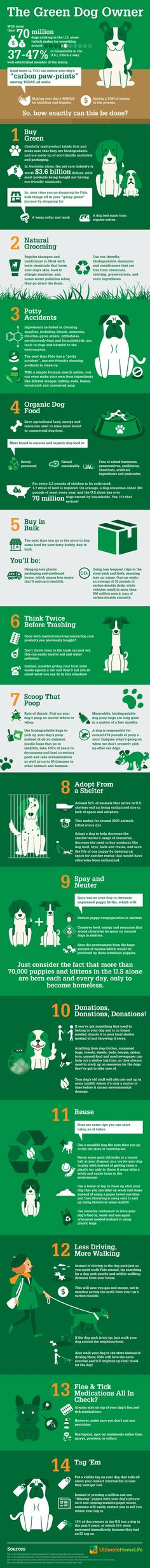 """The 1 billion dogs and cats in the world have a massive impact on the health of our environment. Here are 8 ways to reduce your pet's ecological """"pawprint."""""""