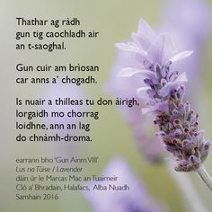 They say that change will come to the world./That the breeze will shift the war./And when you return to the shieling, my finger will trace/a line in the dimple of your spine.  ~  In honour of Remembrance Day, Bradan Press brings you this poem excerpt from Lus na Tùise / Lavender, a volume of new Scottish Gaelic poems by Marcas Mac an Tuairneir (published November 2016).