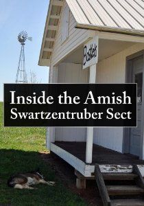 Swartzentruber Amish - Google Search