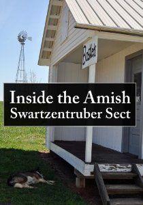 Swartzentruber Amish - Google Search