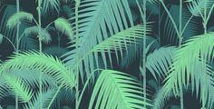 palm jungle wallpaper by cole & son - Google Search