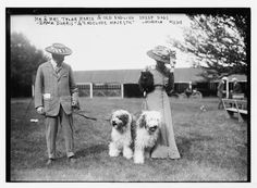 """Mineola Dog Show, Mr. and Mrs. Tyler morse with Old English Sheepdogs, 'Dame Dorris'' and ''Endcliffe Majestic"""""""