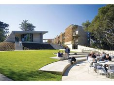The Nueva School - Andrea Cochran Landscape Architect