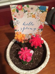 April's Hello Bliss Box inspirational quote shared by Samantha S! Love the idea of using in a flower pot! #helloblissbox #subscriptionbox #happymail