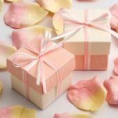 Silk Coral Favour Boxes