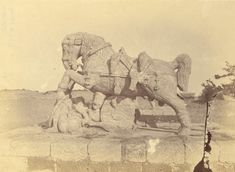 Statue of one of the two horses near the ashvadavara. Sun Temple of Konark from Archaeological Survey of India Collections - 1890 - Part 2 - Old Indian Photos