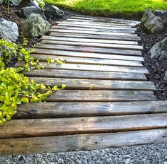 Recycled pallet wood makes a rustic complement to this short garden walk between drive and yard. The spaces between boards allow vining plants to creep underfoot.