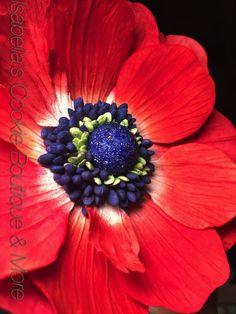 Anemone, cold porcelain clay, gum paste flowers.