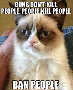 Grumpy cat knows