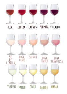 tipos de vinos para una celebración en casa. Maridaje. Sumiller