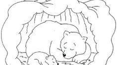 Hibernating Bear Coloring Pages Free Bear Coloring Pages Coloring Pages Color