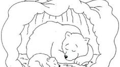 Hibernating Bear Coloring Pages Free Bear Coloring Pages