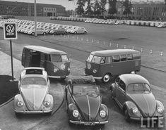 VW lot...dats a lot of VWs