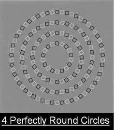 4 perfectly round circles optical illusion