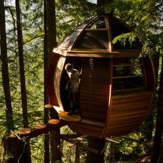 If it was feasible, we would like to work from a Treehouse.