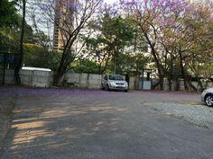 Estacionamento da empresa.