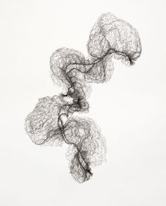 Susie MacMurray | Two Hairnets no.5 2011 | pen drawing