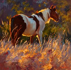Paint In The Evening II by Cheri Christensen Oil ~ 16 x 16 Farm Paintings, Animal Paintings, Horse Paintings, Pastel Paintings, Oil Pastel Colours, Pastel Art, Warm Colours, Horse Drawings, Animal Drawings