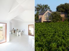 Pavilhão de madeira em vinícola na França
