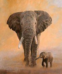 Animal Paintings: David Stribbling - Art - African Elephants  by David Stribbling