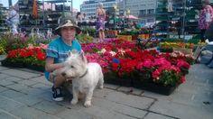Onnin kesäkauden avaus Kuopion torilla. #Market_Place #Kuopio #Summer