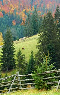 Tatra Mountains, Carpathian Mountains, Magic Forest, Fictional World, Green Fields, Landscape Photos, Great Britain, Beautiful Landscapes, Countryside