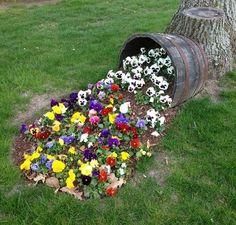 Imagini pentru borduri ghiveci flori
