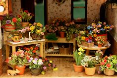 Miniature Flower Shop Displays in a Range of Containers: Separating Areas for a Working Flower Shop