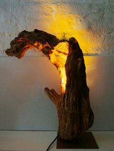 Forest Wedding Decorations, Light Decorations, Driftwood Lamp, Wood Lamps, Wood Lights, Low Maintenance Landscaping, Drift Wood, Wood Ideas, Natural Resources