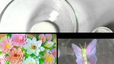 blossomsbyangelica - YouTube