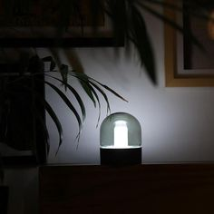 This joyful color change mushroom lamp makes for a fantastic night light! Measures x LED light included. Includes lamp, USB power cable, RGB controller, and manual. Solar Lamp, Solar Lights, Fairy Lights, Globe String Lights, Hanging Lights, Strip Lighting, Modern Lighting, Stairway Lighting, Luxury Lighting