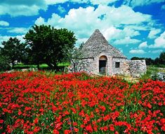 Undiscovered coast - Puglia, Italy.