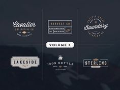 Ad: Vintage Logo Kit: Volume Three by Hustle Supply Co. on A unique vintage starter kit including 6 Logo / Insignias (AI), 12 Icons (AI), an ABR brush file for photoshop to add texture to your final Logo Branding, Branding Design, Logo Design, Graphic Design, Brand Identity, Branding Ideas, Business Brochure, Business Card Logo, Business Style