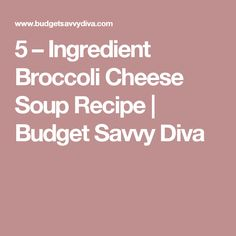 5 – Ingredient Broccoli Cheese Soup Recipe | Budget Savvy Diva