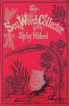 antique book cover – The Sea Weed Collector by Shirley Hibberd