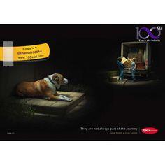 انجمن حمایت از حیوانات SPCA #100sad #creativeposter #advertisement #advertising  #spca #campaign #bestadposter2016 #تبلیغات #آموزش_تبلیغات #پوسترخلاقانه #پوسترتبلیغاتی #کمپین #کمپین_تبلیغاتی