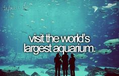 Bucket List. Visit the World's Largest Aquarium. This would be amazing.