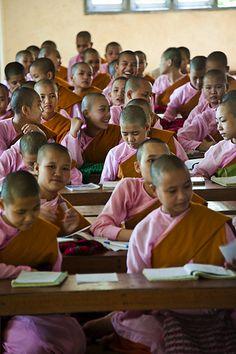 young buddhist nuns studying at kalaywa tawya monastery, yangon, myanmar Bagan, Mandalay, We Are The World, People Around The World, Camille Redouble, Laos, Buddhist Nun, Buddhist Beliefs, Beautiful World