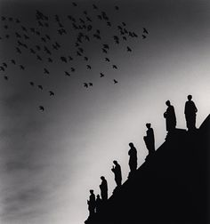 One Hundred and Four Birds, Prague, Czechoslovakia, 1990, Michael Kenna