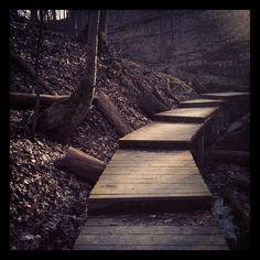 Spring Hollow Trail @ Hampton HIlls Metro Park, Photo by drewparmelee