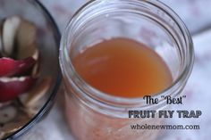 """Another Pinner wrote: Got Fruit Flies? This DIY Fruit Fly Trap tested """"best"""" in our test of several models. It's super easy and it works!"""