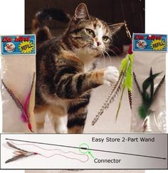 Da Bird. Absolutely an outstanding toy when it comes to simulating the movement of a bird during playtime with your cat.