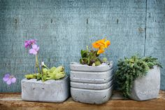 DIY Concrete Planters   Super modern, super durable projects from reused items from around the house.